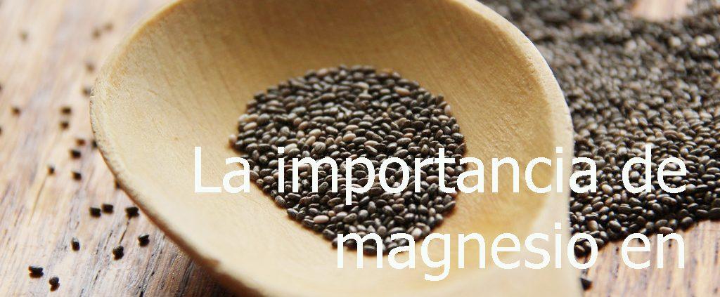 La importancia del magnesio en nuestro organismo